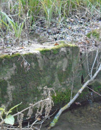 A medence betonmaradványai