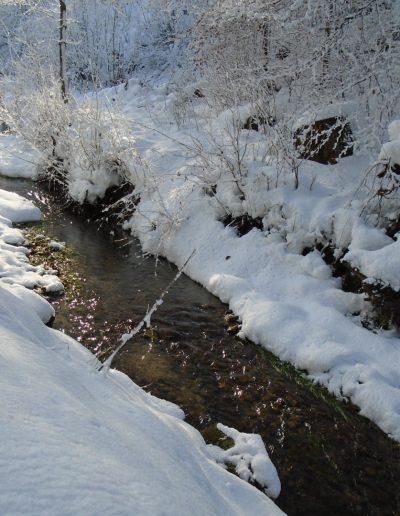 Bittva-patak télen