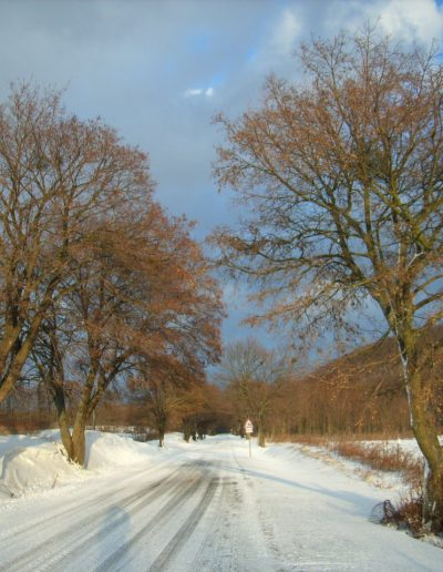 Tél 2012 febr 045