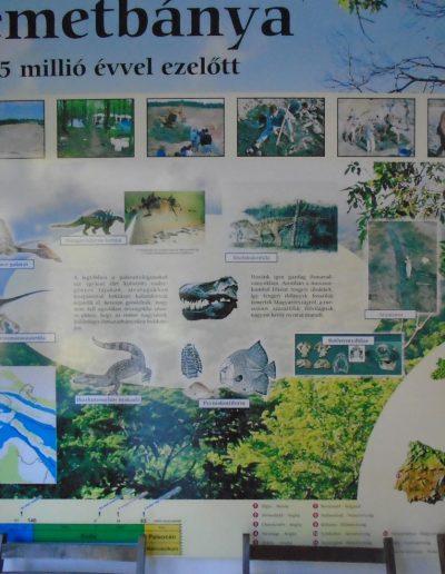 Németbánya 85 millió évvel ezelőtt
